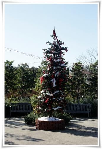 クリスマスモード4.JPG