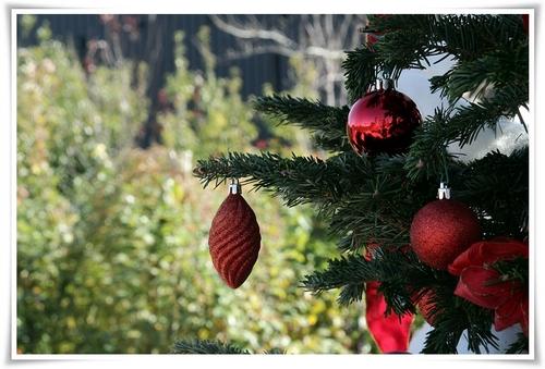 クリスマスモード5.JPG